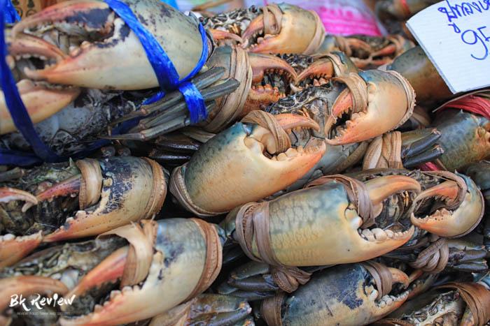 กินปู ดูทะเล ครั้งที่ 14 (5 of 38)
