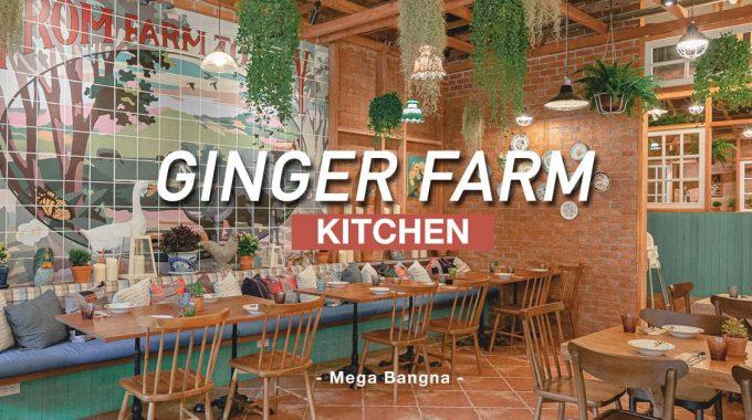 GINGER-FARM-kitchen-เมกาบางนา-Cover