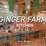 [รีวิว] GINGER FARM Kitchen เมกาบางนา อาหารออร์แกนิกจากฟาร์มสู่เมือง